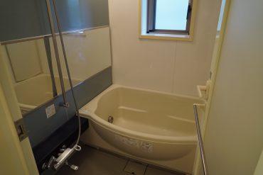 バスタブまでゆったりたっぷり。洗面台といい、鏡が大きいですね…。