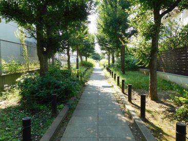 公園まで続く緑道はお散歩コースに
