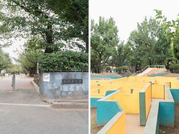 すぐ近くに羽根木公園が。季節の変化を感じ取れそう。豊か。
