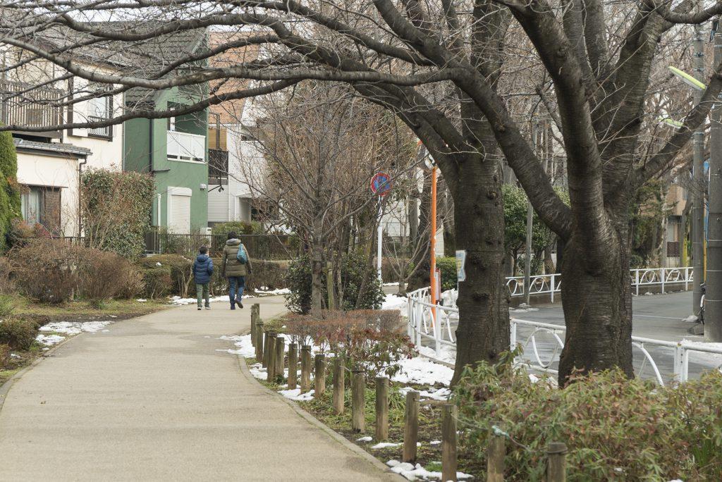 周辺には緑道があり、のどかな街並みが心地いいです。