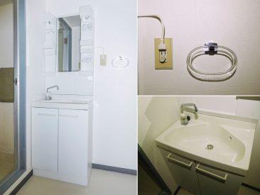 洗面台もあります、タオルかけがかわいい(内装)