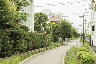 建物のすぐ後ろには緑道が通っています。とっても穏やか。
