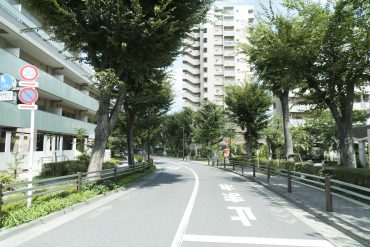 周辺の道は整備されていて緑の多い道です(周辺)