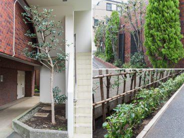 建物のまわりには、豊かな植栽がたくさん。