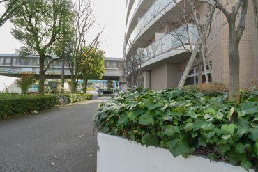 環八と小田急線が交わる交差点のすぐそばのマンションです。