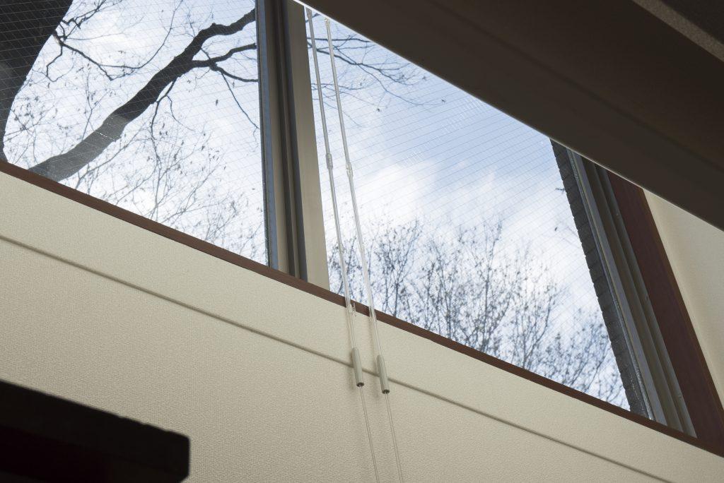 階段の先、窓に空が見える。南向きだから日差しがちゃんと入ってくる。