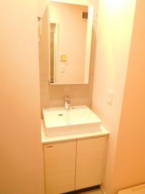 一面の大きな鏡のある洗面台は映えますね☆収納は鏡裏。