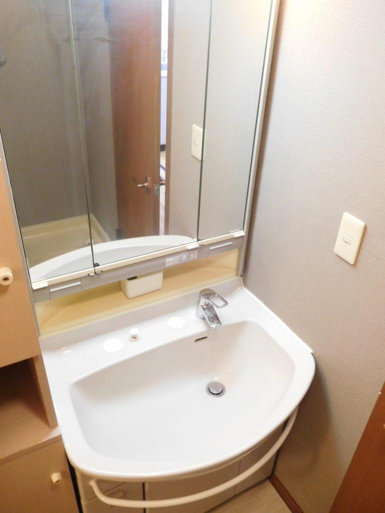 独立洗面台付きは鏡も大きめなのがありがたい。