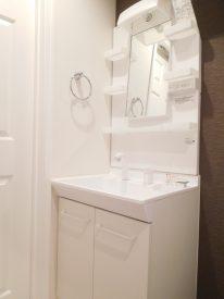居室が真っ白だったので水回りのブラウンの壁が新鮮です