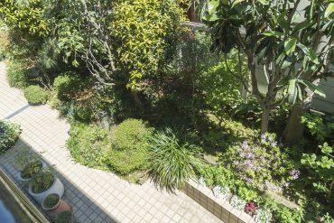 ベランダからは1階の植栽で季節を感じる。