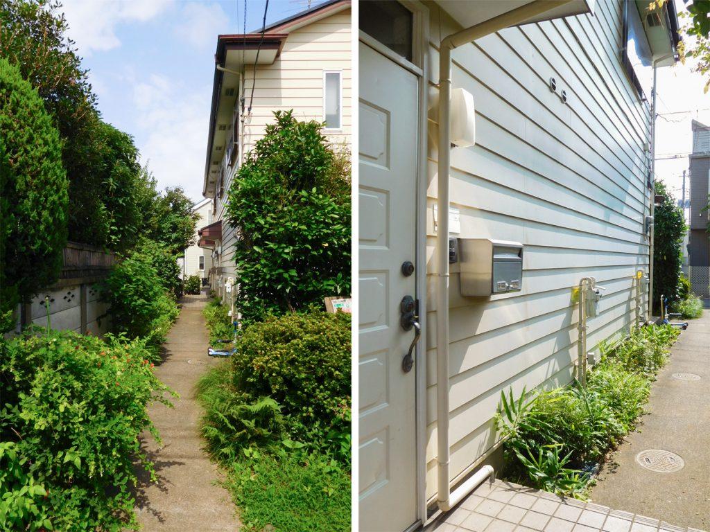 エントランスの緑のアプローチと、玄関外側の様子。