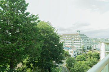 バルコニーからの眺め。緑に囲まれたマンションなのです。