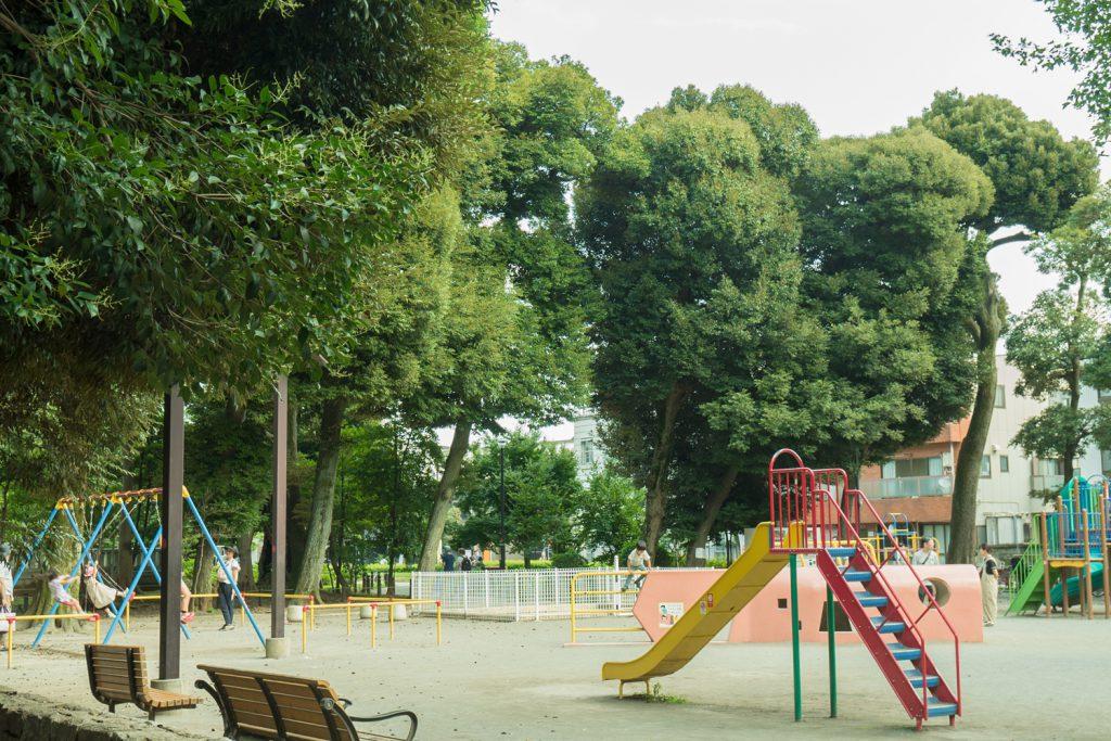 マンション横の大きい方の公園「若林公園」。