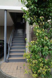 建物2階にあがるエントランスの階段。
