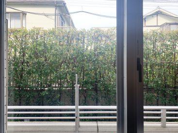 バルコニーの外には植栽のみどり。目隠しされつつ、見応えもいいな。