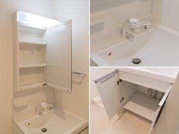 シャワーつきの洗面台。