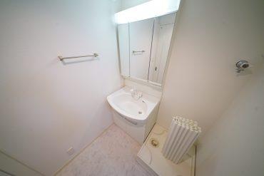 洗面脱衣所はトイレとはセパレートタイプ