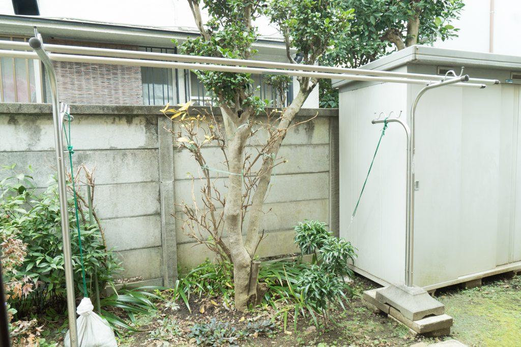 物干し完備のお庭。