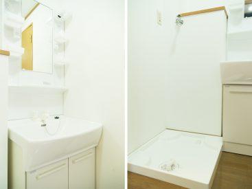 独立洗面台と室内洗濯機置場
