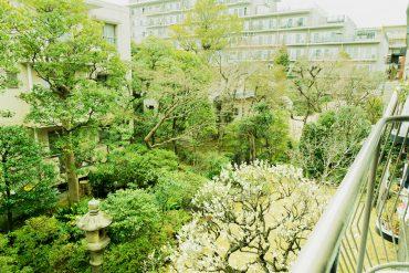 バルコニーからの眺め。立派で広いお庭が見えるのです!